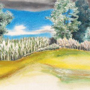 Vor dem Maisfeld sitzend
